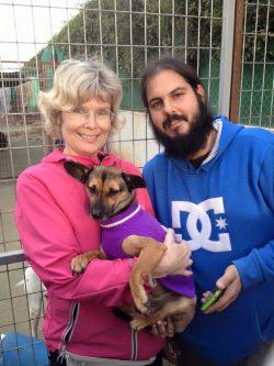 Perros adoptados