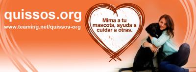 quissos.org