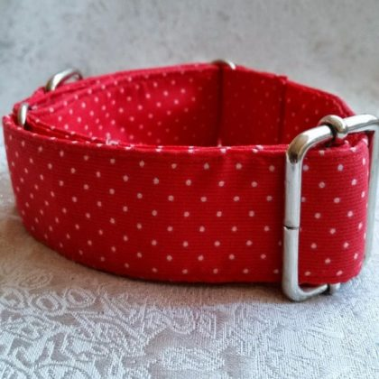 collar para perros personalizado mod C11