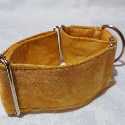 collar para perros amarillo dorado