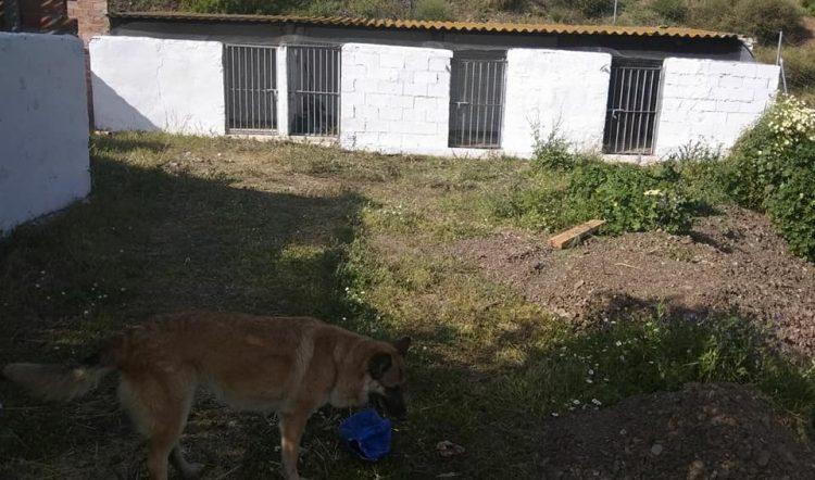 Villa Chuchazos avanza con Mucho Esfuerzo