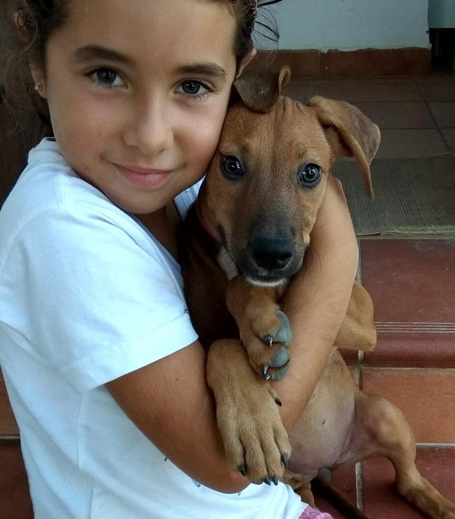 Juli Cachorro para adoptar en protectora de animales