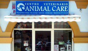 tratado en centro veterinario animalcare en rincon de la victoria malaga