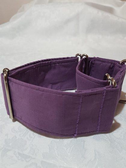 collar para perros violeta modelo C31